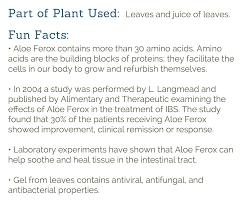 succulent facts medicinal succulents