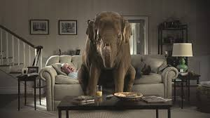 elephant living room the elephant in the ok gop s living room fortysix news