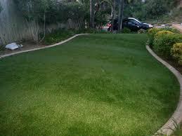 artificial turf cost lake davis california backyard playground