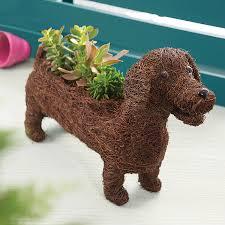 dachshund planter by marquis u0026 dawe notonthehighstreet com