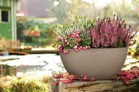 Low Bowl Planter by 7 Of The Best Plant Pots To Spruce Up Your Garden This Spring Bt