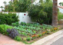 landscaping ideas small backyard vegetable garden design front