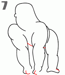 how to draw a gorilla step by step