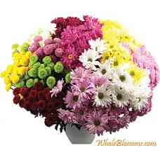 flowers in bulk fresh flowers for wedding wedding flowers ideas