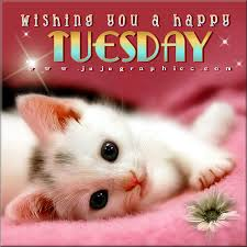 Happy Tuesday Meme - wishing you a happy tuesday graphics quotes comments images