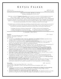 Best Resume Format Executive by Top Resume Samples Executive Format Resumes By New York Resume