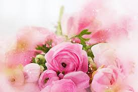 flowers roses flowers roses bouquet free image on pixabay