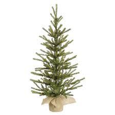 pine trees lights decoration