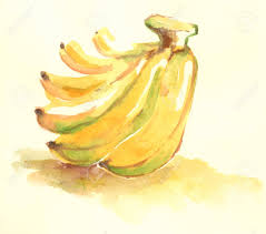 water color yellow banana illustration fruit painting with water