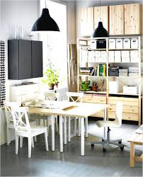 Pendant Lights Ikea pendant lights ikea design ideas bealin home light designing