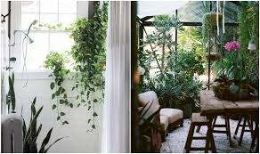 Interior Garden Services Services In Singapore Recommended Companies For Gardeners