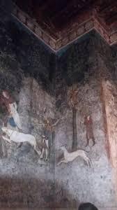 chambre avignon fresque dans la chambre du cerf photo de palais des papes