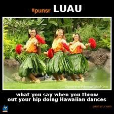 Hawaiian Memes - punsr luau meme punsr com there is a joke in every word the