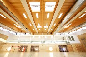 ceiling acoustic panel wooden perforated commercial wiehag
