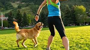 best dogs for runners and active people health