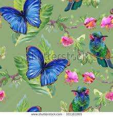 Flowers For Birds And Butterflies - meadow flowers tropical birds butterflies seamless stock