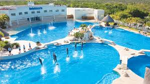 the best place to swim with dolphins dolphinaris
