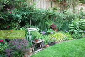 North Facing Backyard Gap Gardens Mixed Herbaceous North Facing Border Pleached