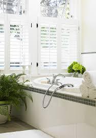 Best Houseplants Bathroom Design Amazing Indoor Bathroom Snake Plant Bathroom