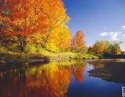 Why Fall Is The Best Season 10 Reasons Why Fall Is The Best Season