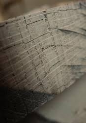 understanding wood grain improves your woodworking