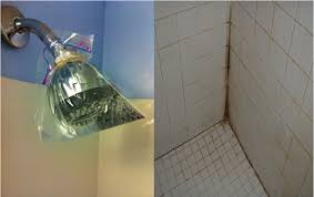 clogged shower head and how to clean the shower tiles