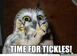 Tickled Memes - tickled memes 100 images 25 best memes about tickle my pickle
