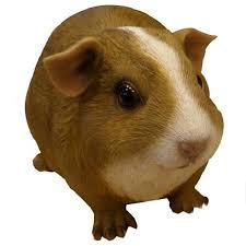 guinea pig garden ornament the garden factory