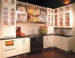 Kitchen Cabinet Door Fronts No Door Kitchen Cabinets Captainwalt Com