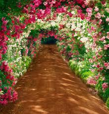 wedding backdrop font flower tunnel font b b font scenic outdoor 5x7ft backdrops