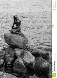 famous little mermaid statue den lille havfrue of copenhagen