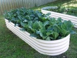 62 best gardening images on pinterest vegetable garden raised