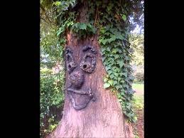 tree face diy tree faces youtube