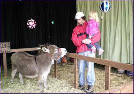 Washington Christmas Tree Farms - nobles only u cut christmas tree farm vancouver wa home design ideas