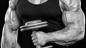 4 weeks to big arms t nation