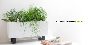 glowpear self watering pots unique white planter boxes for urban