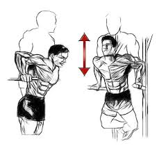 weighted chest dips the often neglected killer chest exercise to