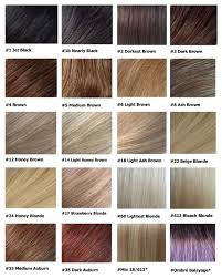 light strawberry blonde hair color chart shocking hairstyles of black hair color chart brown blonde shade