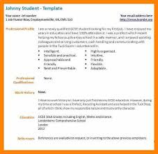 Parse Resume Example by Good Resume Examples For Jobs Resume Great Resume Examples For