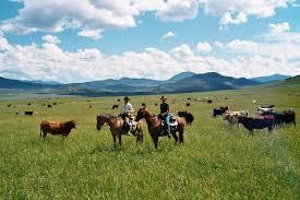 the dude rancher u0027s association