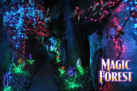 enchanted forest christmas lights enchanted garden of lights rock city