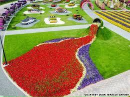 world u0027s largest natural flower garden in dubai flowers and gardens