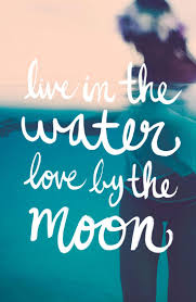 quote quote love best 25 quotes about the beach ideas on pinterest quotes about