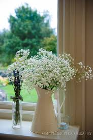 25 best gypsophilia images on pinterest flower arrangements