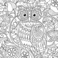 coloring page for adults owl owl coloring pages for adults printable kids colouring pages owl