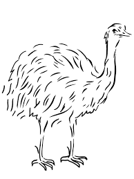 australian animal template animal templates free u0026 premium