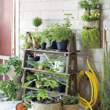 garden plant stands 17 best images about plant stands on pinterest