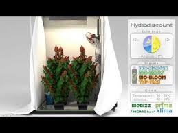 chambre de culture 100x100x200 comment construire placard cannabis la réponse est sur admicile fr