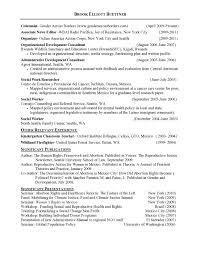 Free Download Curriculum Vitae Blank Format Curriculum Vitae Template For Ireland Create Professional
