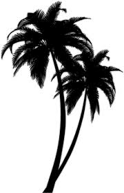 palm tree clipart tribal pencil and in color palm tree clipart